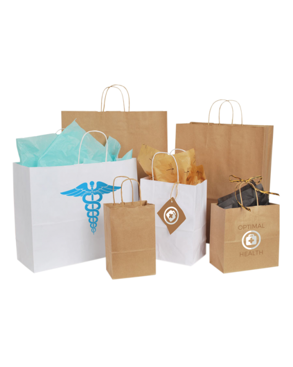 Natural Kraft Paper Shopping Bags w/ Paper Twist Handles