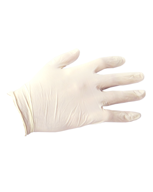 White Vinyl Exam Gloves
